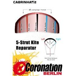 Cabrinha Switchblade Strut Bladder