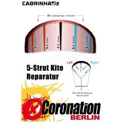 Cabrinha Switchblade 2018 Leading Edge bladder Ersatzschlauch