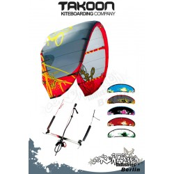 Takoon SOUL 2010 Plug and Play - One for All Kite 5qm Komplett